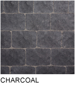 bergerac_charcoal