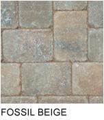 capecobble_fossil